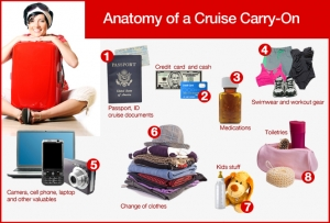 anatomy-cruise-carry-on