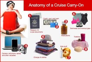 anatomy-cruise-carry-on